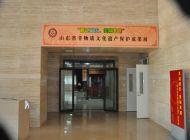 山东省非物质文化遗产保护成果展
